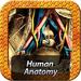 Human Anatomy TH